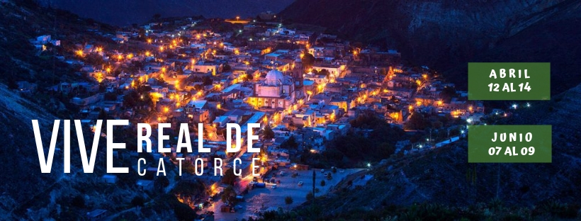 VIVE REAL DE CATORCE